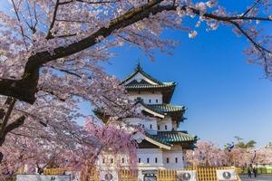 Điểm đến du lịch Nhật Bản mùa hoa anh đào 2019
