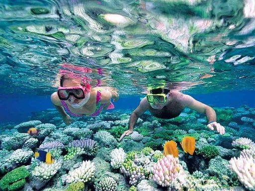 Lặn San Hô bằng ống thở ( snokerling)